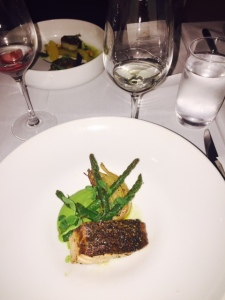 (Healthy Salmon - Photo by Jill Weinlein?